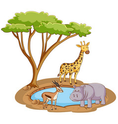 scene with wild animals pond vector image
