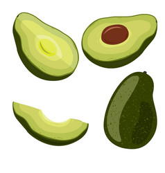 avocado set on white background vegetarian oils vector image