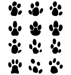 black footprints tapir vector image