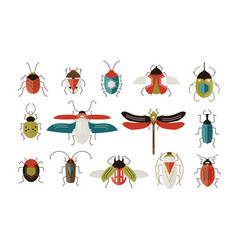 collection various colorful geometric insects vector image