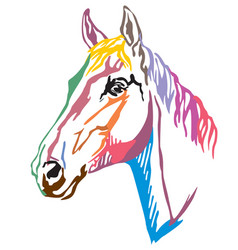 Colorful decorative portrait of trakehner horse-3 vector