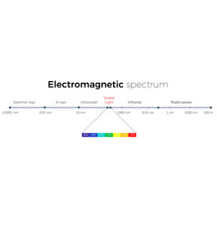 electromagnetic spectrum scale vector image