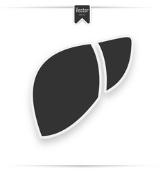 liver icon in trendy flat style vector image
