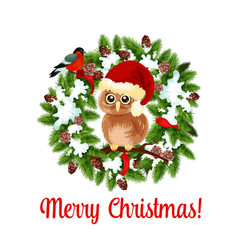 merry christmas holidays wish owl on wreath vector image
