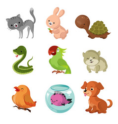pets domestic animals flat icons vector image