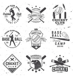 set cricket and baseball club badges vector image