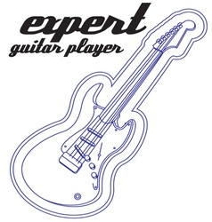 Expert Guitar Player vector image vector image