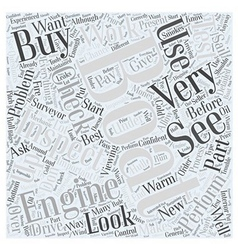 Inspecting Your New Boat Word Cloud Concept vector image vector image