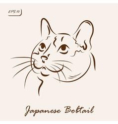 Japanese Bobtail vector image
