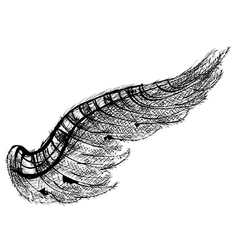 Black wing vector
