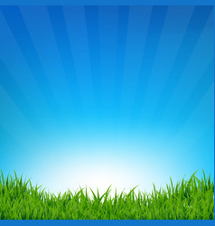 Blue sky and grass sunburst background vector