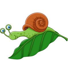 Cartoon funny snail on a leaf vector