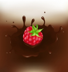Chocolate dipped raspberry vector