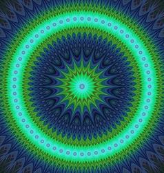Cold winter star fractal mandala design vector