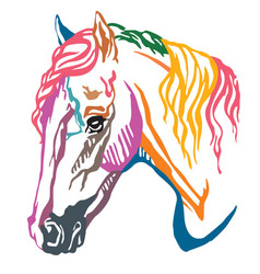 colorful decorative portrait of welsh pony vector image