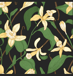 floral seamless pattern with vanilla leaves vector image