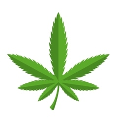 Green cannabis icon vector