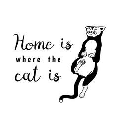 home is where the cat is meow power domestic vector image