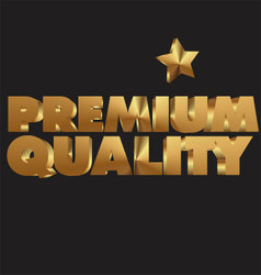 Premium quality 3d golden text vector image