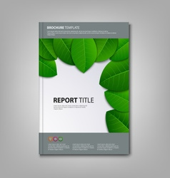 Brochures book or flyer with green leaves template vector image