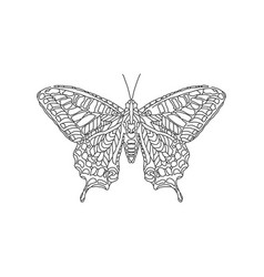 butterfly animal ornament vector image