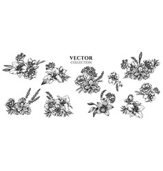 Flower bouquet black and white anemone vector