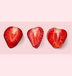 Strawberry isolated slices core red vector