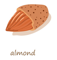 almond icon isometric 3d style vector image