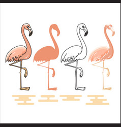 flamingo silhouettes set vector image