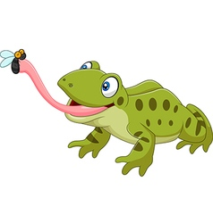 Cute frog catching fly isolated vector image