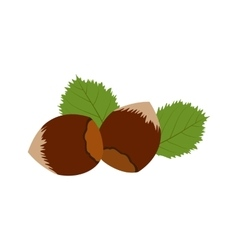 Hazelnut icon flat vector image