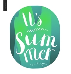It s summer lettering on green grass background vector