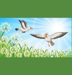 nature scene background with two birds flying in vector image