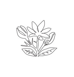 one single line drawing beauty fresh evergreen vector image