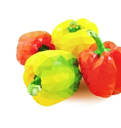 red and yellow pepper vector image
