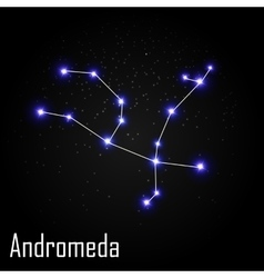 Andromeda Constellation with Beautiful Bright vector