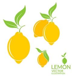 Lemon Isolated fruit on white background vector image