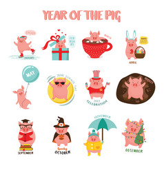 Monthly creative calendar 2019 with cute pig vector