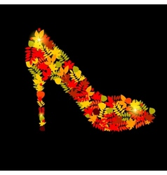shoes from autumn leaves vector image