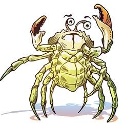 Sea Crab vector image vector image