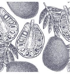 Breadfruit background vector