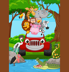 cartoon wild animal riding a red car in the jungle vector image