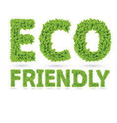 Eco friendly word made of green leafs vector image