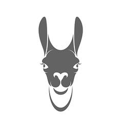 Llama Head vector image