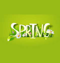 spring paper lettering with grass vector image