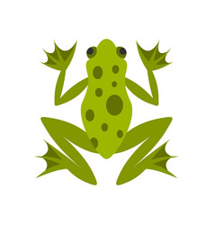 frog icon flat style vector image