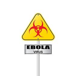 Ebola virus vector