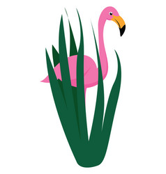 flamingo in grass on white background vector image