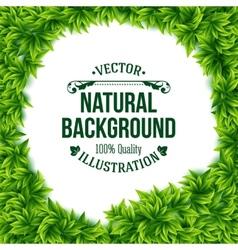 Natural frame of fresh green spring leaves vector