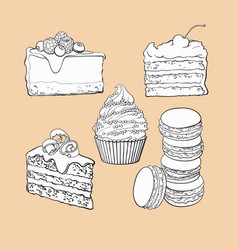 set of desserts - cupcake chocolate and vanilla vector image vector image